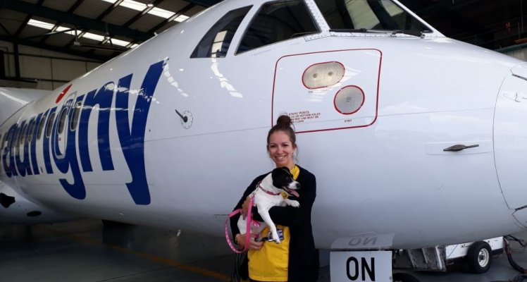 Aurigny staff member and her dog Peppa in front of an Aurigny plane