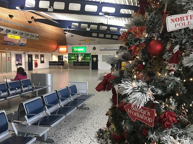 1 of our  at the Arrivals Hall #christmas #christmastree #christmasdecor #itsbeginningtolookalotlikechristmas
